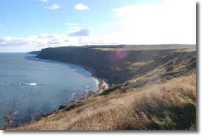 Gristhorpe Cliffs and Filey Brigg beyond
