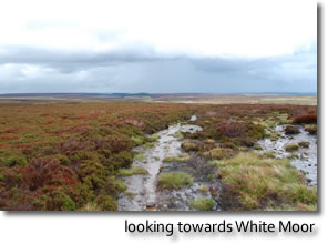 looking towards White Moor