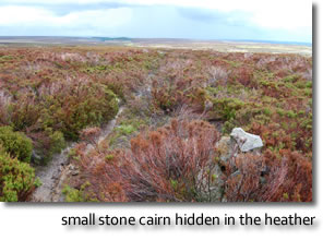 small stone cairn hidden in the heather