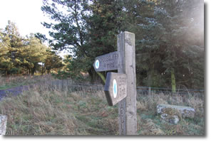 signpost to Crosscliffe