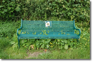 Wolds Way bench